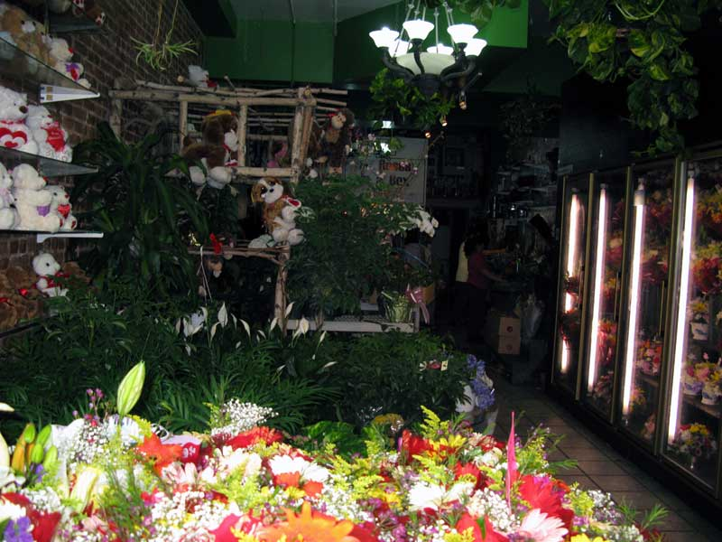 Photo of the inside of Flower City.