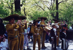 Picture of Mariachi Band